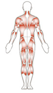physical therapy in gilbert az, sports rehap, therapists, spectrum spine and sport physical therapy, neck and back, aquatic